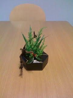 small ikebana at A-Ok classroom 教室