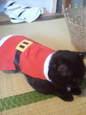 Little boy Santa